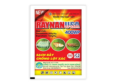 Raynan USA 400WP